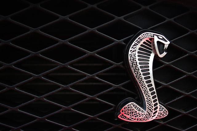 Shelby Logo - Cars Logos
