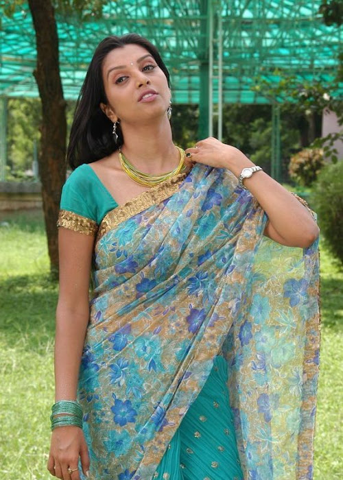 madhulika in saree hot photoshoot