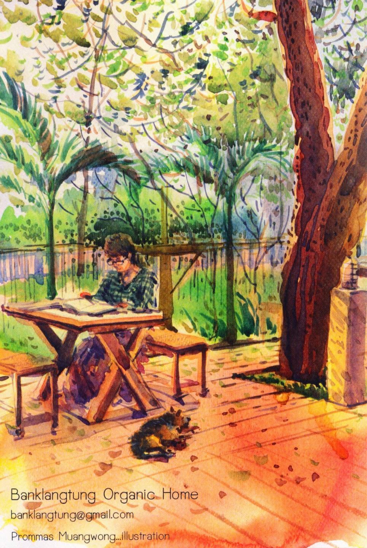 postcard, organic, home, thailand