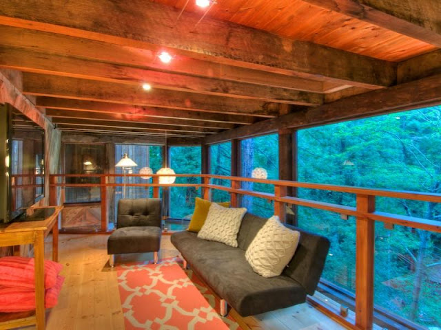 Photo of sofa on the gallery inside of tree house in the forest