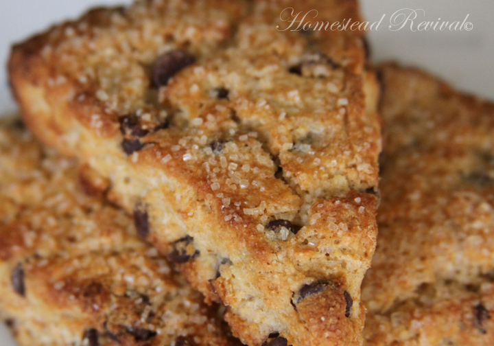 Homestead Revival: Whole Wheat Scones