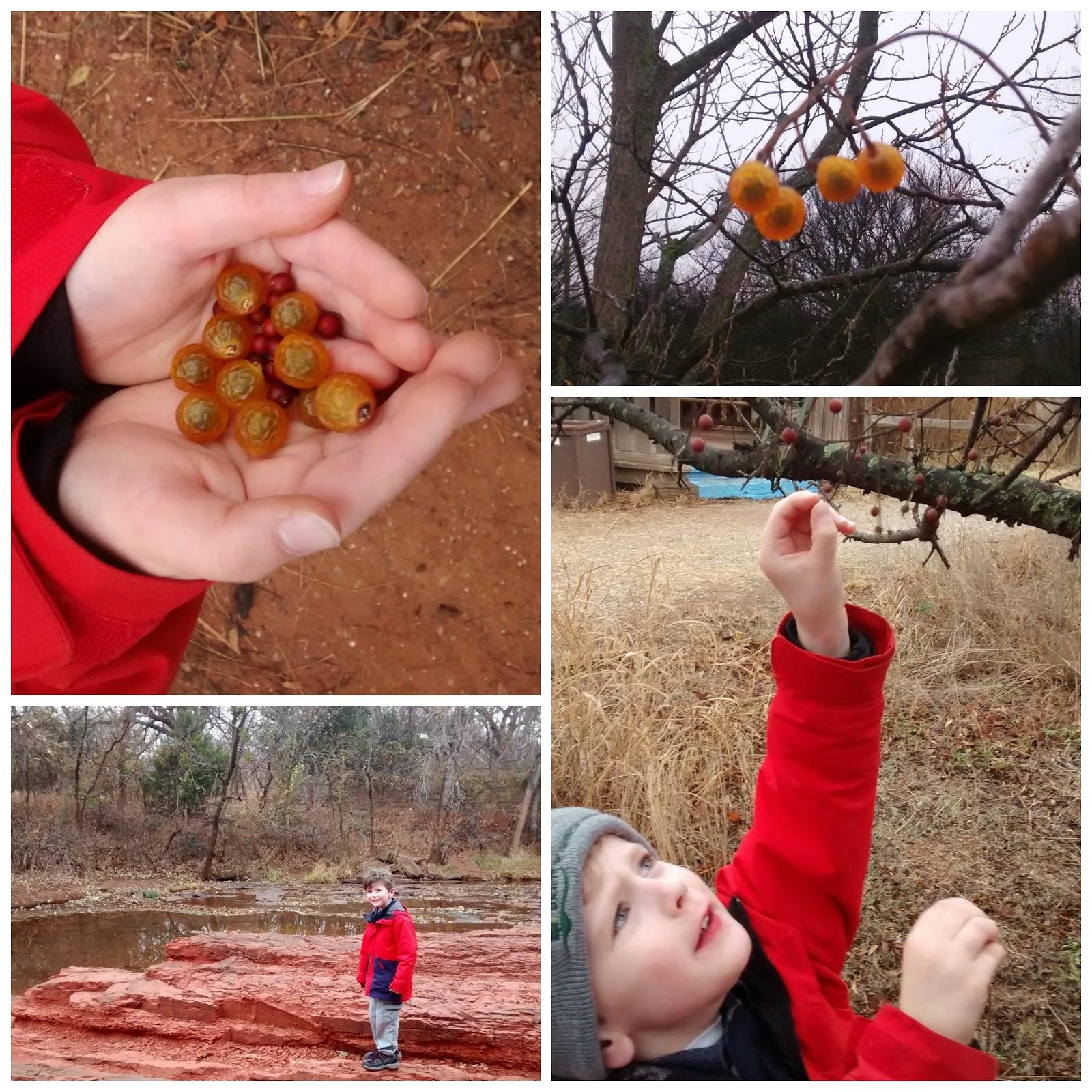 Nature Walk: Pine Cone Ornament