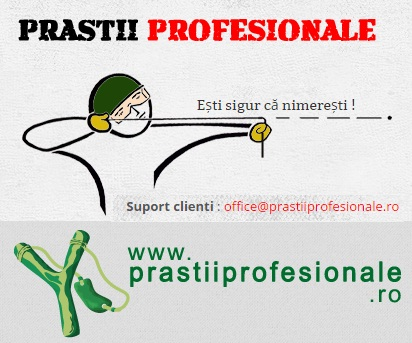 Prastii profesionale