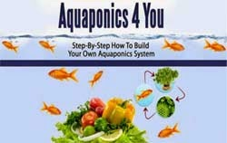 Aquaponics 4 You Step-by-Step