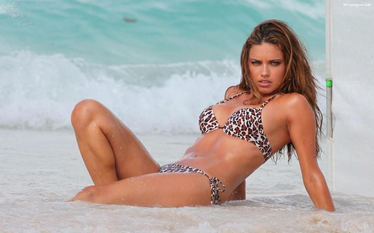 http://3.bp.blogspot.com/-zDC0dxdTROw/TfUJi9cyQZI/AAAAAAAAARM/EM4tdDgdA3I/s1600/adriana_lima_wet_bikini-1280x800.jpg