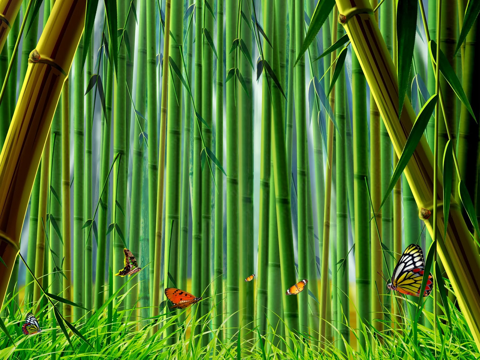 all new wallpaper : bamboo forest hd desktop wallpaper