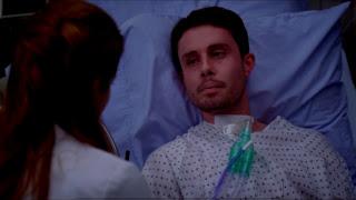 Grey's Anatomy S09E17. Transplant Wasteland