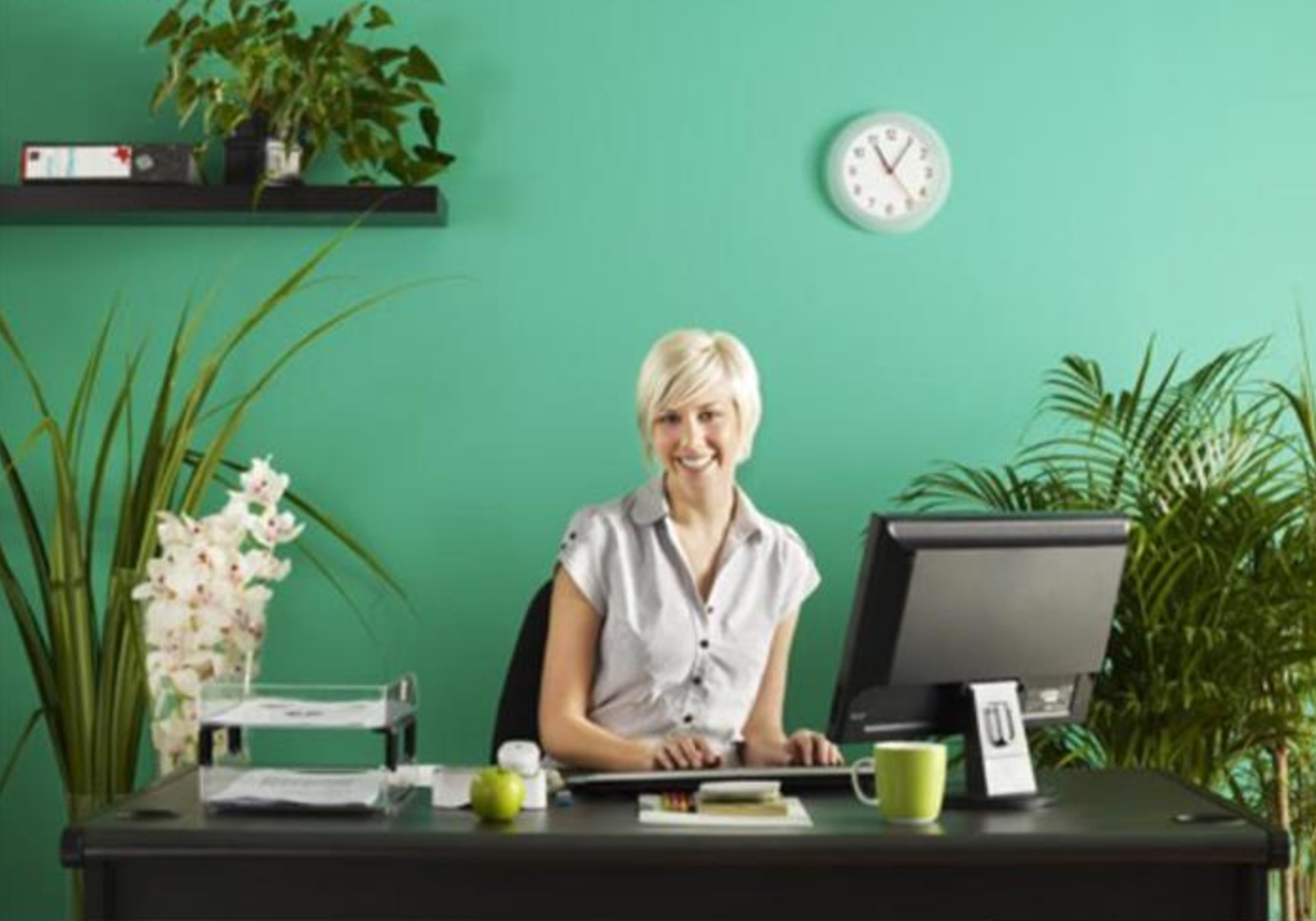 The office furniture blog at 8 ways to make your office awesome this summer - Cool office plants ...