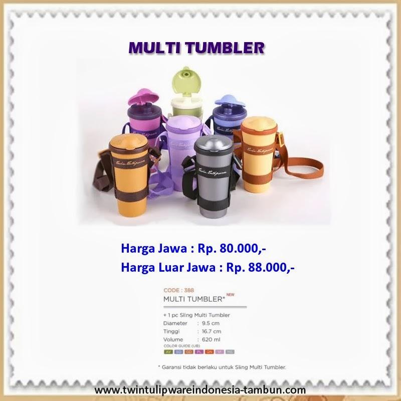 multi tumbler tulipware 2013
