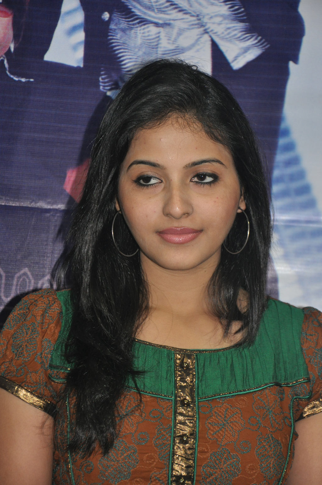 Complete List Of Anjali Movies | Actress Anjali Filmography