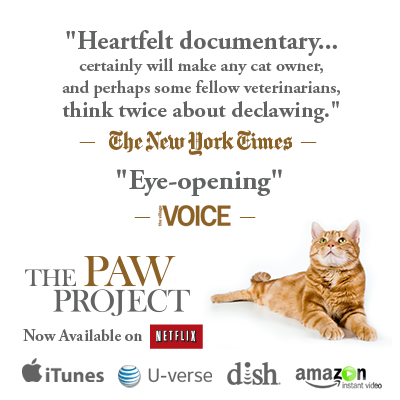 The Paw Project documentary by Dr Jennifer Conrad now on iTunes, U-verse, Dish, Amazon, Netflix