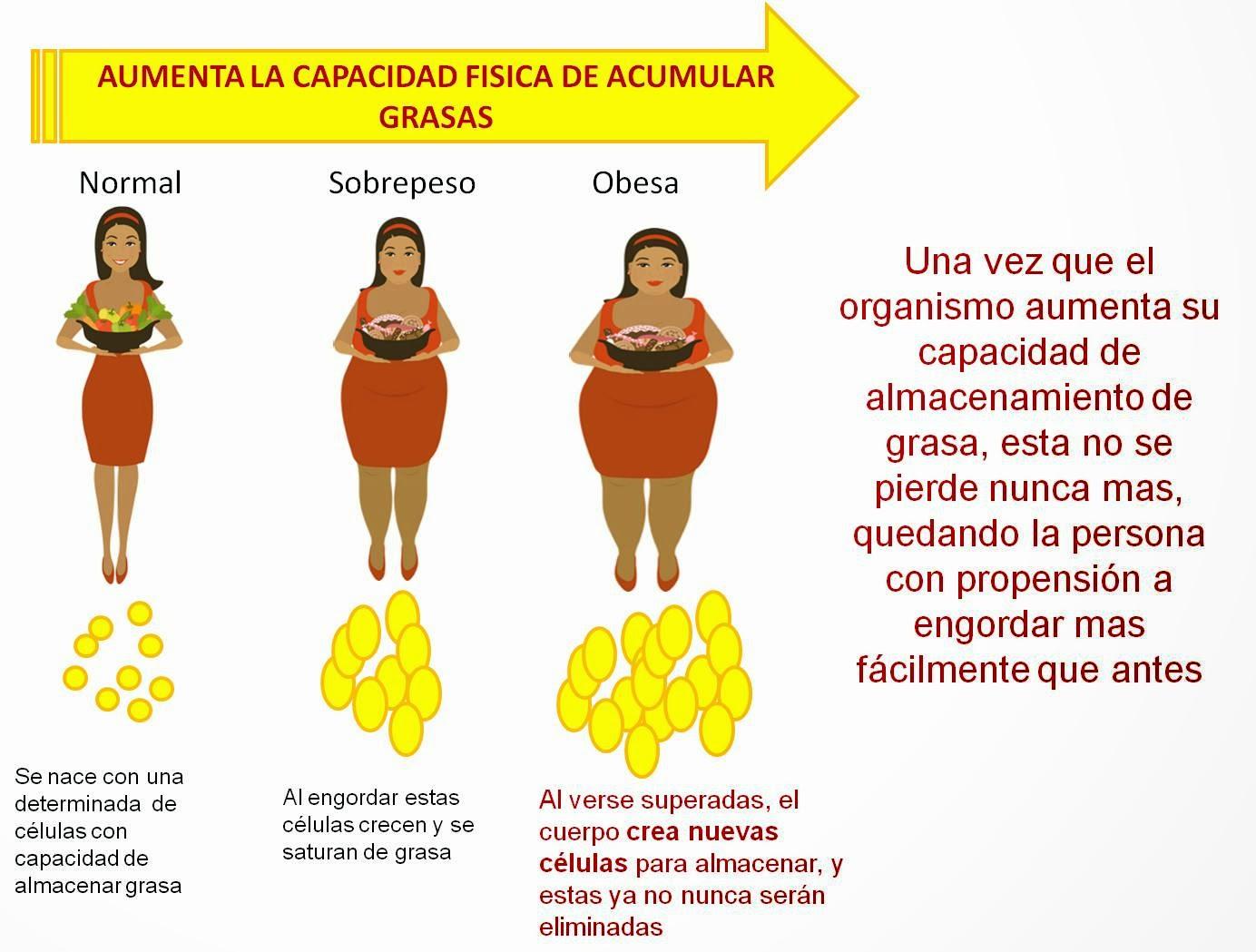 Tanto, consejos para bajar de peso sin hacer dieta