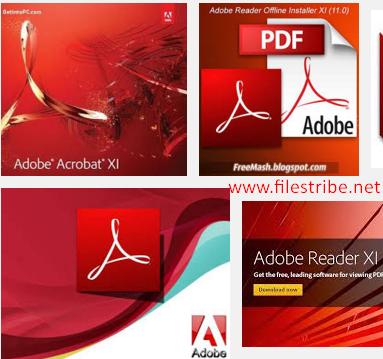 Adobe Reader 11.0.10 Offline Installer Free Download