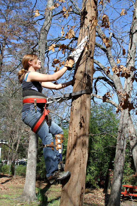 how to set up a tree stand harness