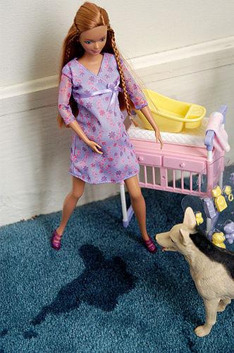 Pregnant Barbie Giving Birth