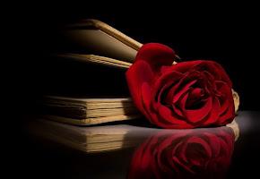 """Livro """"O Símbolo Perdido""""."""