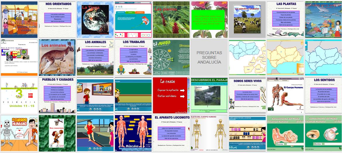 http://laminaprimaria3.blogspot.com.es/view/flipcard/search/label/CONOCIMIENTO%20DEL%20MEDIO