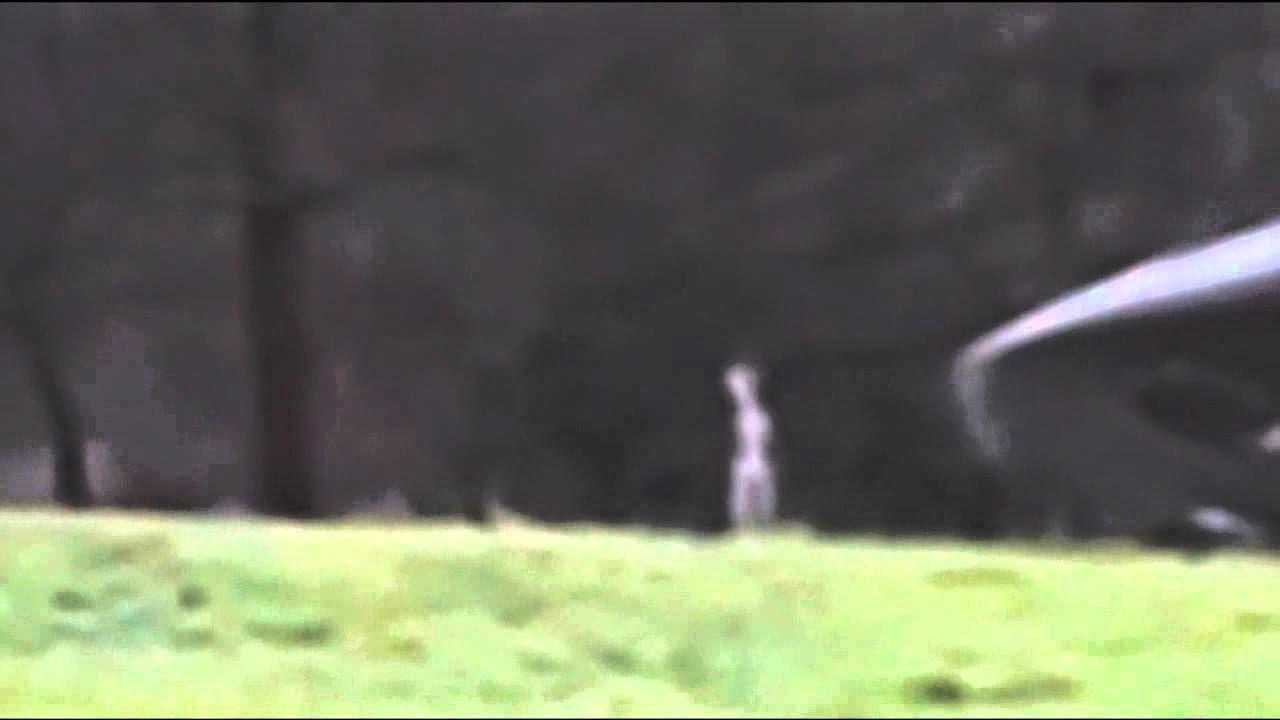 LOS MEJORES AVISTAMIENTOS OVNIS DEL 2014 (VIDEO)