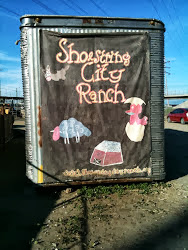 Shoestring City Ranch in Paramount