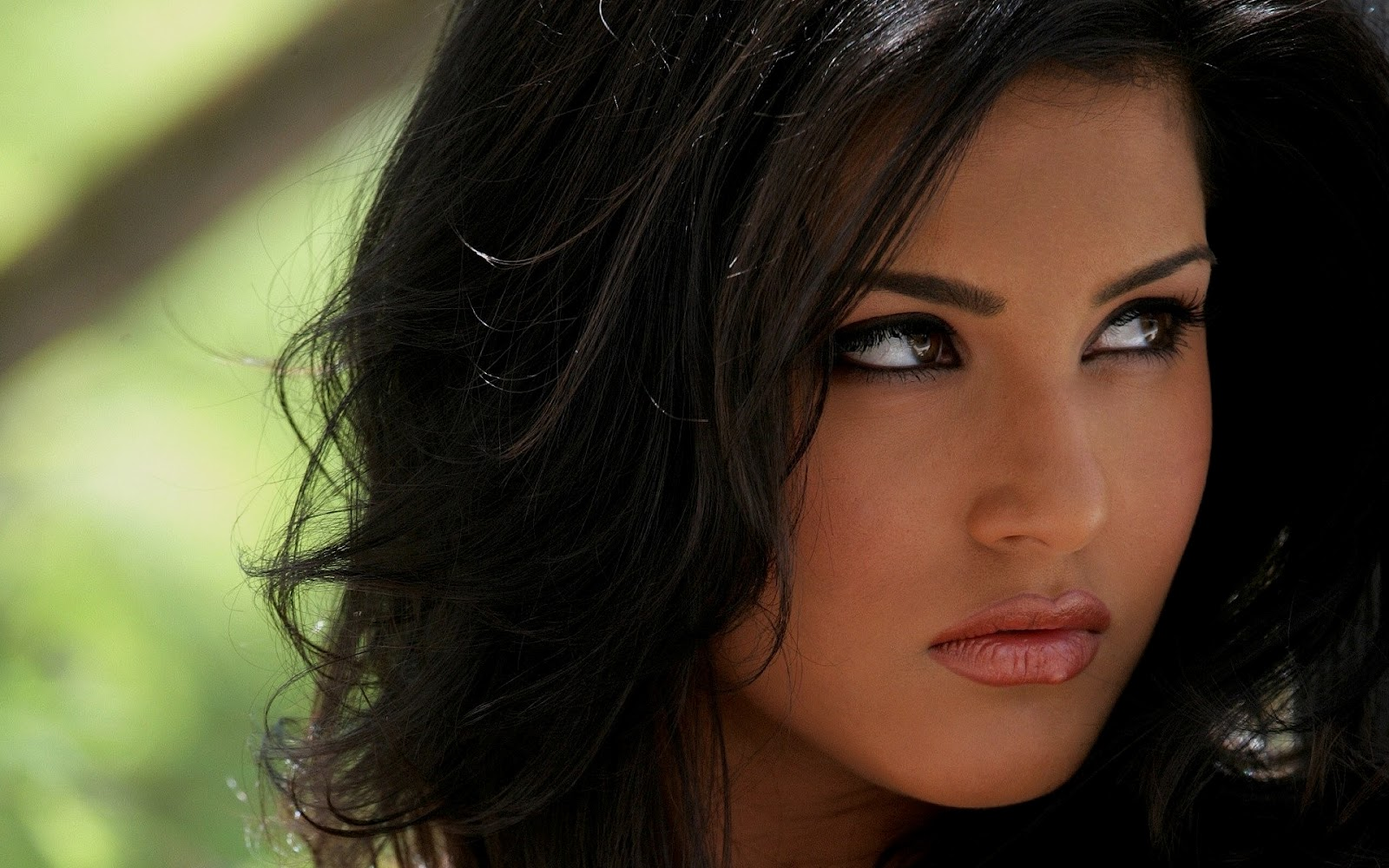 Free Download Sunny Leone Hd Wallpapers Latest