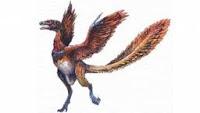 ditemukannya nenek moyang burung tertua di dunia