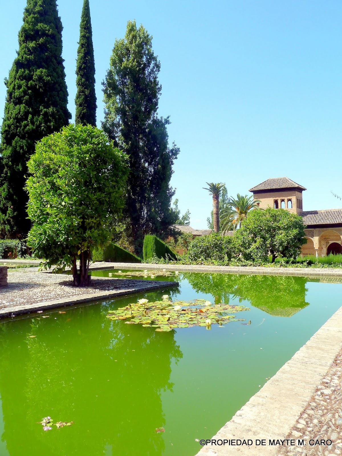 Fuentes de granada nenufares en los jardines de yusuf iii for Jardines nazaries