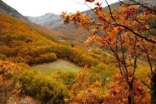 Otoñada Valle del Jerte