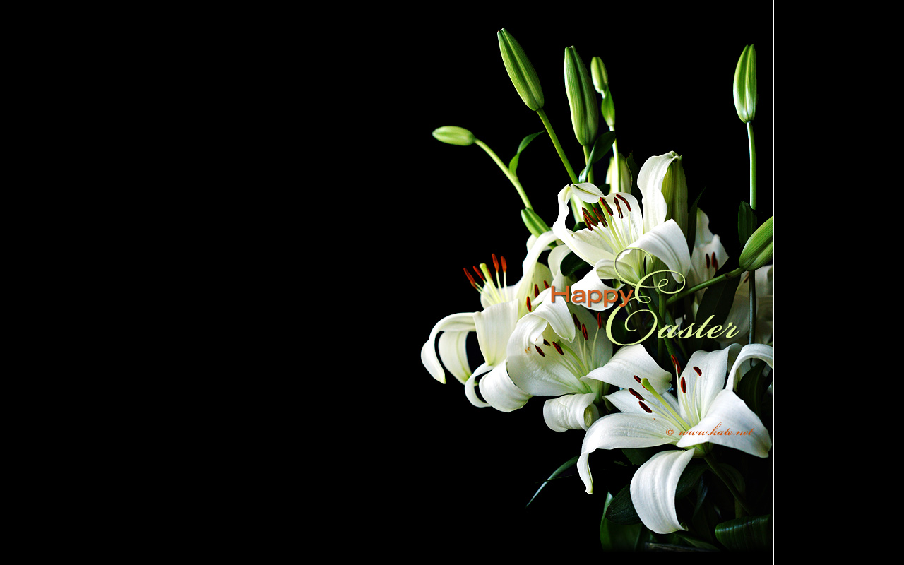 wallpaper bouquet spring lily - photo #47