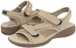 Clarks Shoes Womens Trainers