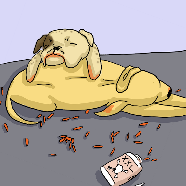 Sick Dogs Got into Medicine Comic Quills and Frills