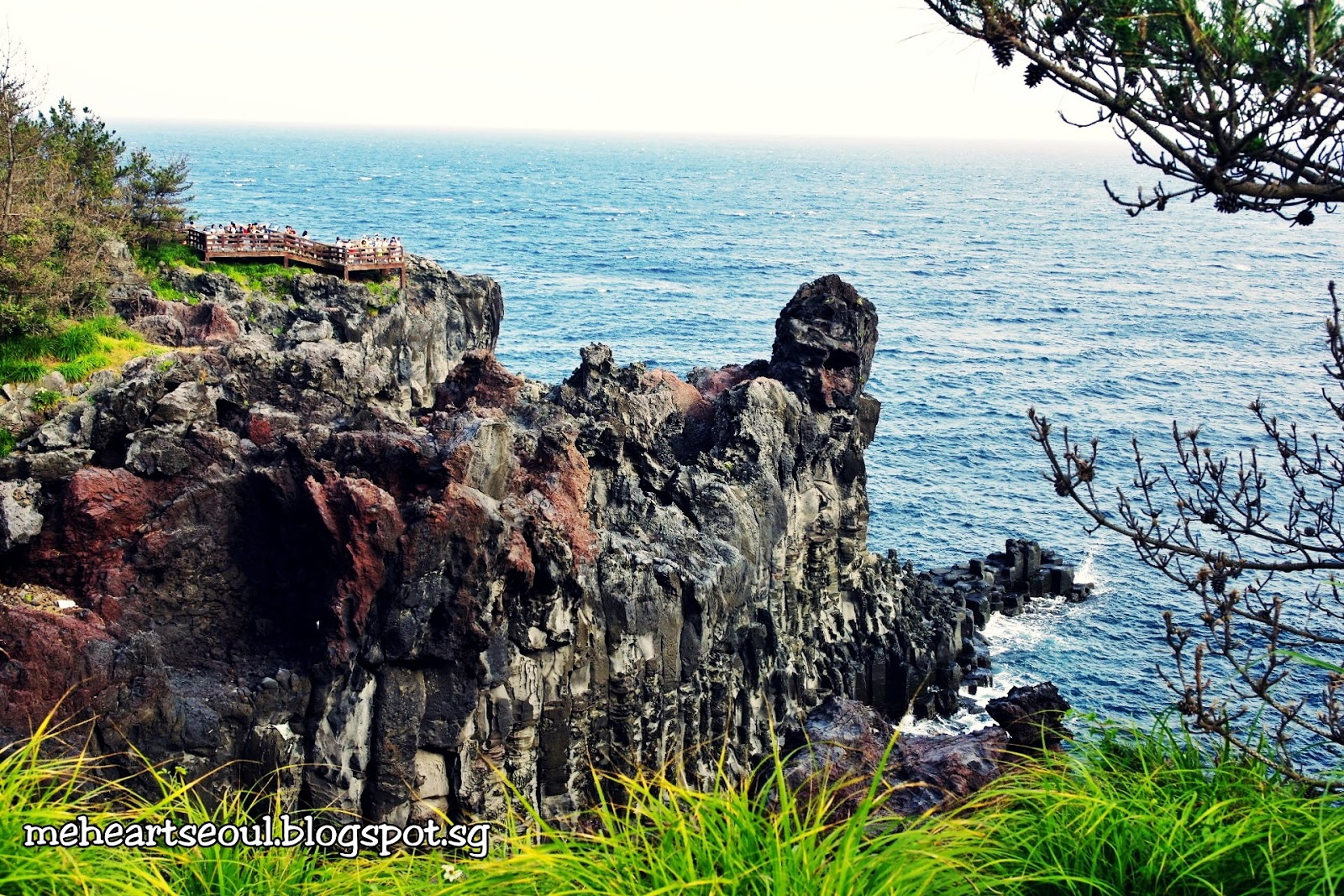 Recommended Taxi Tour to tourist attractions in Jeju | meheartseoul