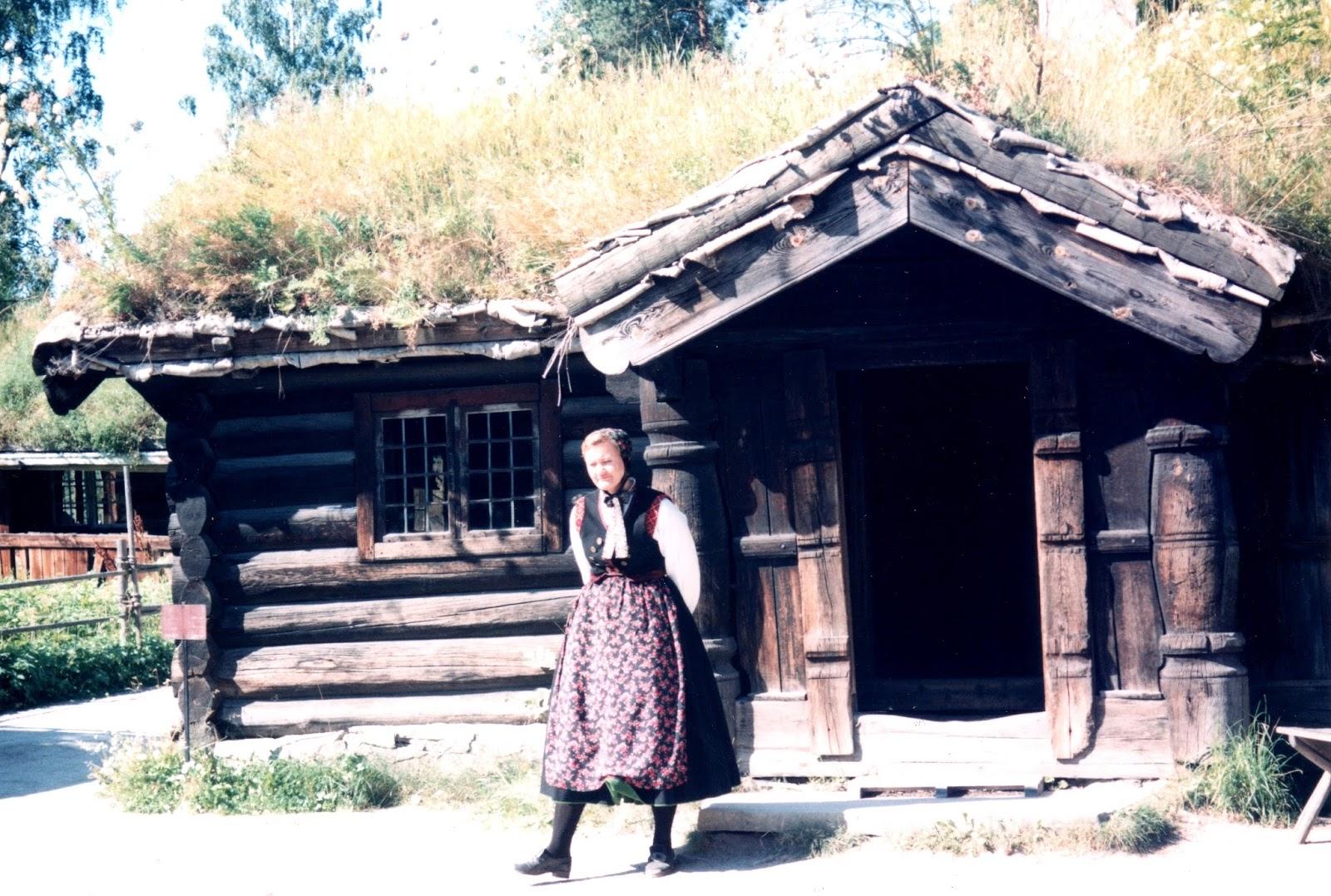 Sostenibilidad de javier neila las casas noruegas de for Casa techo 1 agua