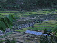 Menyusuri Panorama Indah Desa Wisata Tempur Jepara