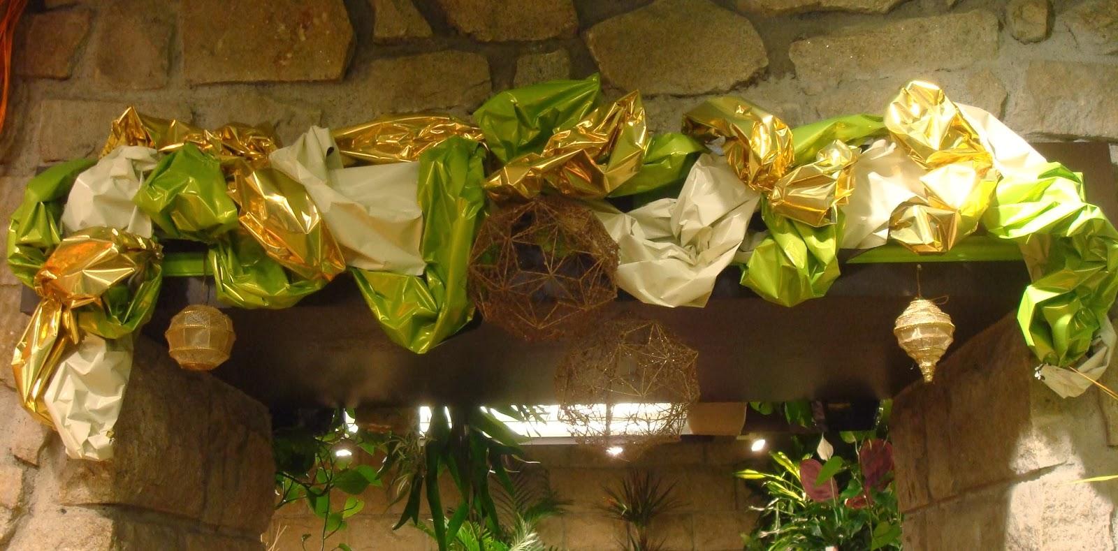 Extrêmement Fleuriste Isabelle Feuvrier: Décoration de nos vitrines Noël 2013 FE06