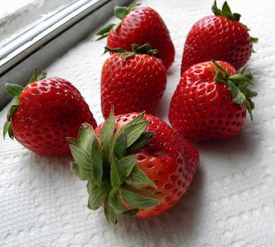 strawberry senior singles 52510 strawberry shake $1895 52520 orange cream shake $1895  ready-to-drink shakes - singles 68700 dutch chocolate ready-to-drink shake $335.