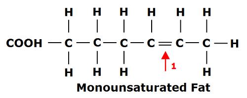 These Fatty Acids Are Liquid At Room Temperature