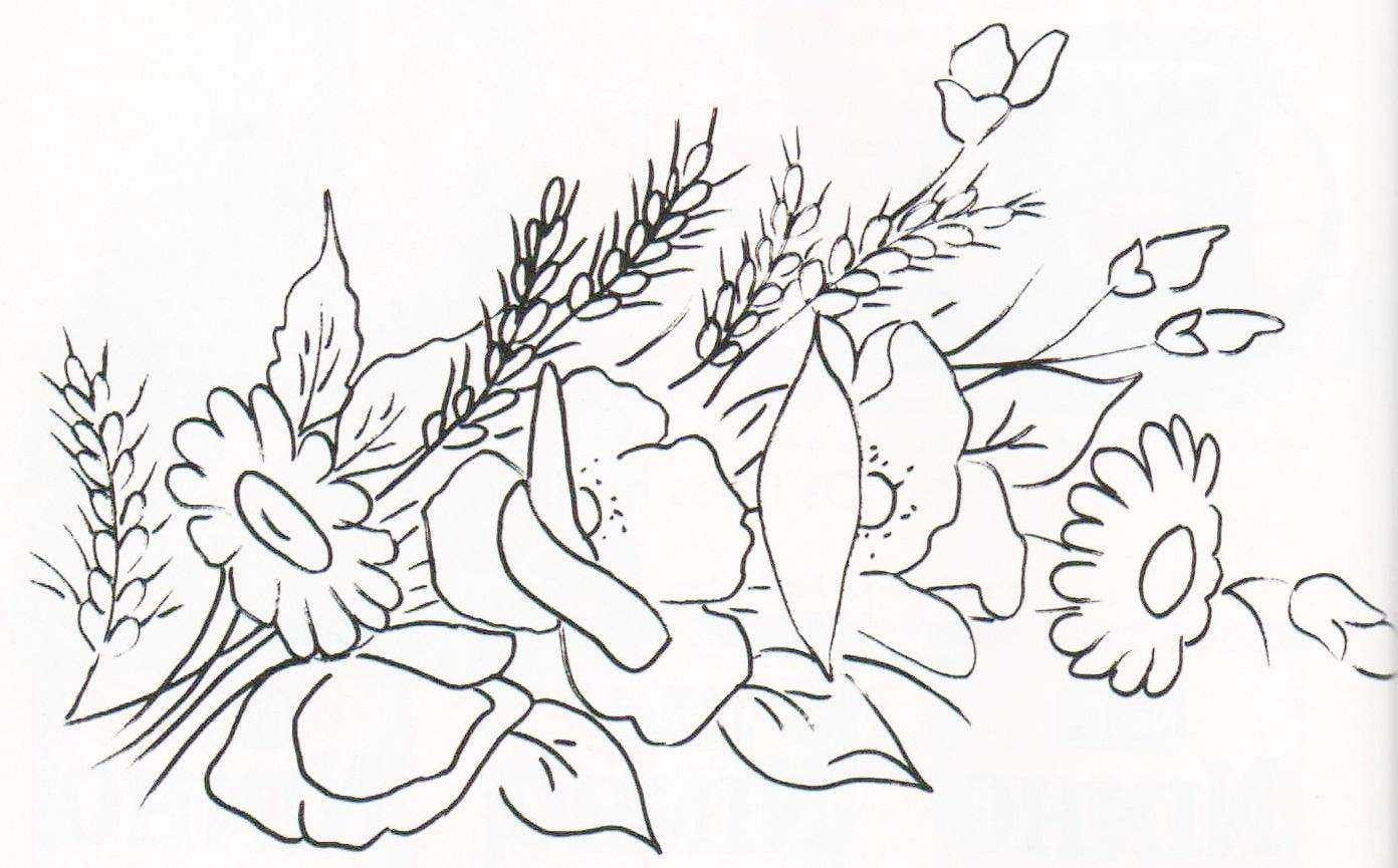 Risco desenho flores Papoulas, margaridas e trigo.
