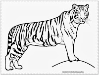 tiger coloring pages for kids