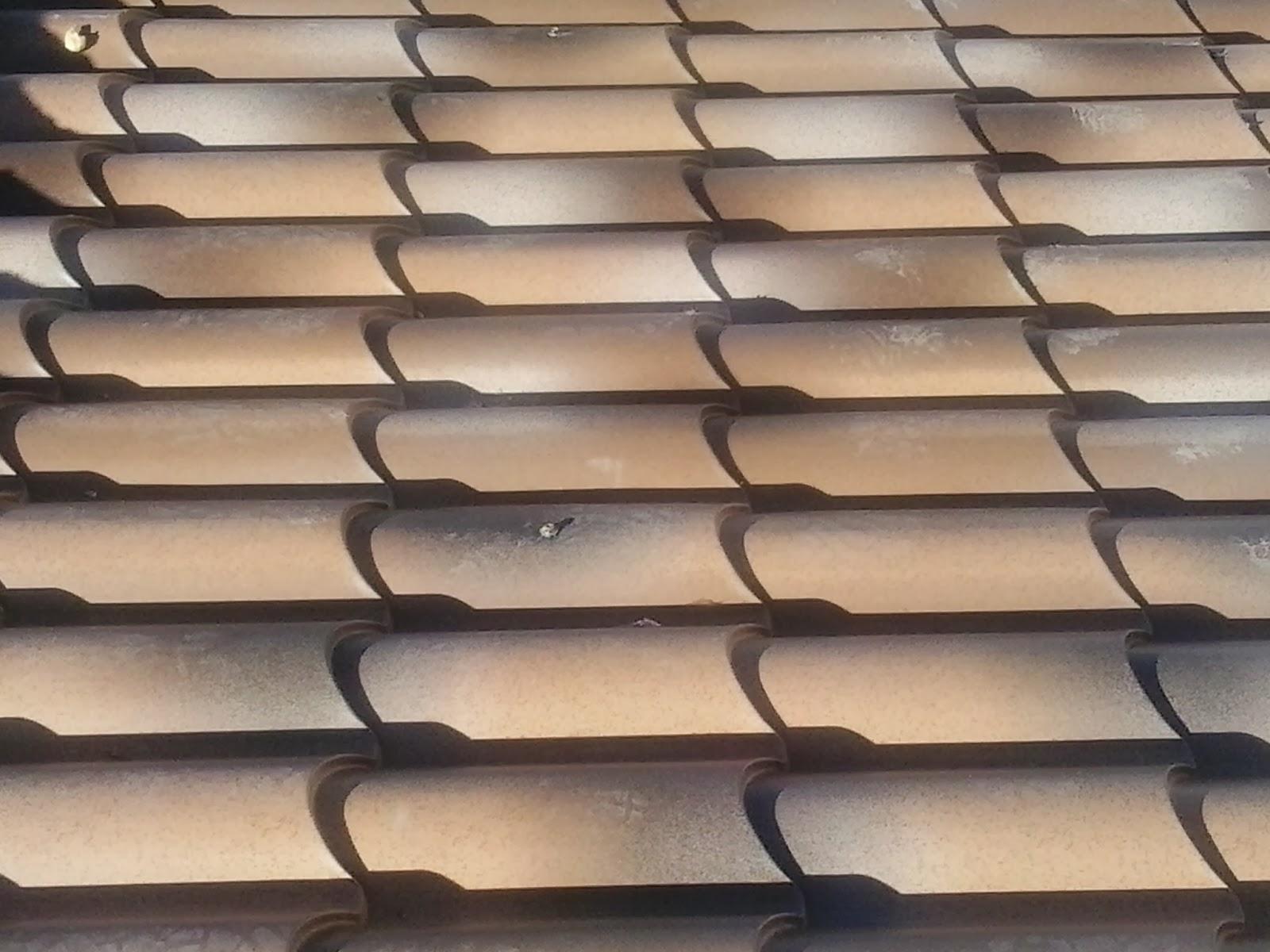 Arreglar tejado de chapa tejados de naves y locales en for Tejados de chapa sandwich precios
