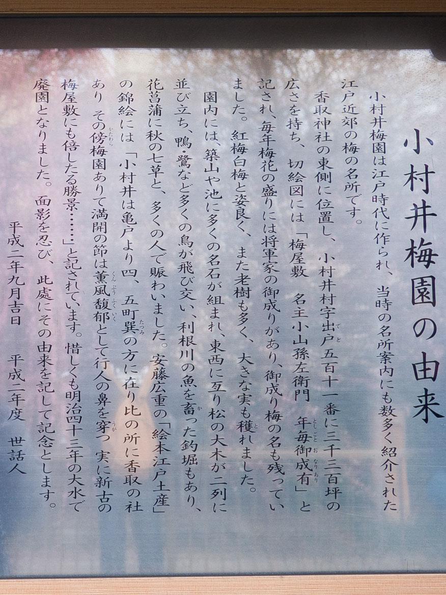 小村井梅園 由来