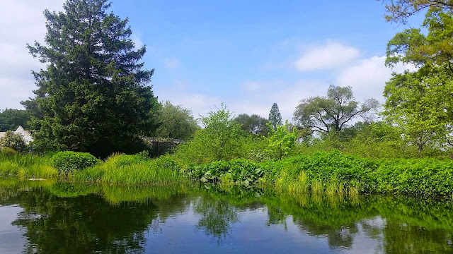 Queens-Botanical-Garden-NY-Travel-The-East