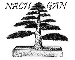 Nachgan