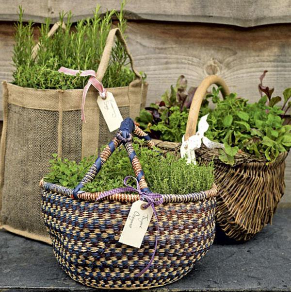 huerto en macetas  cestos de mimbre- kitchen-garden