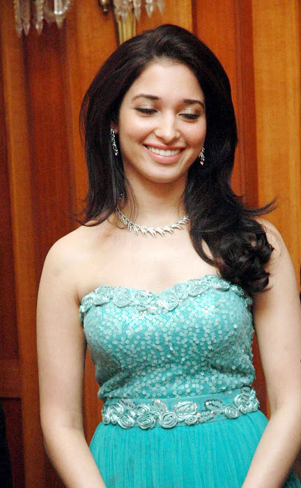 tamanna bhatia at idea filmfare awards glamour  images