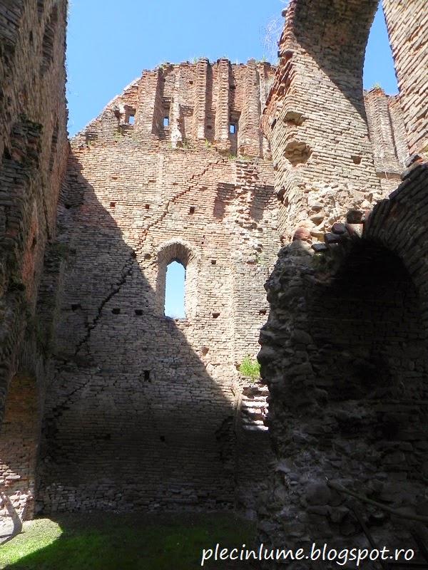 Ruinele cetatii Slimnic