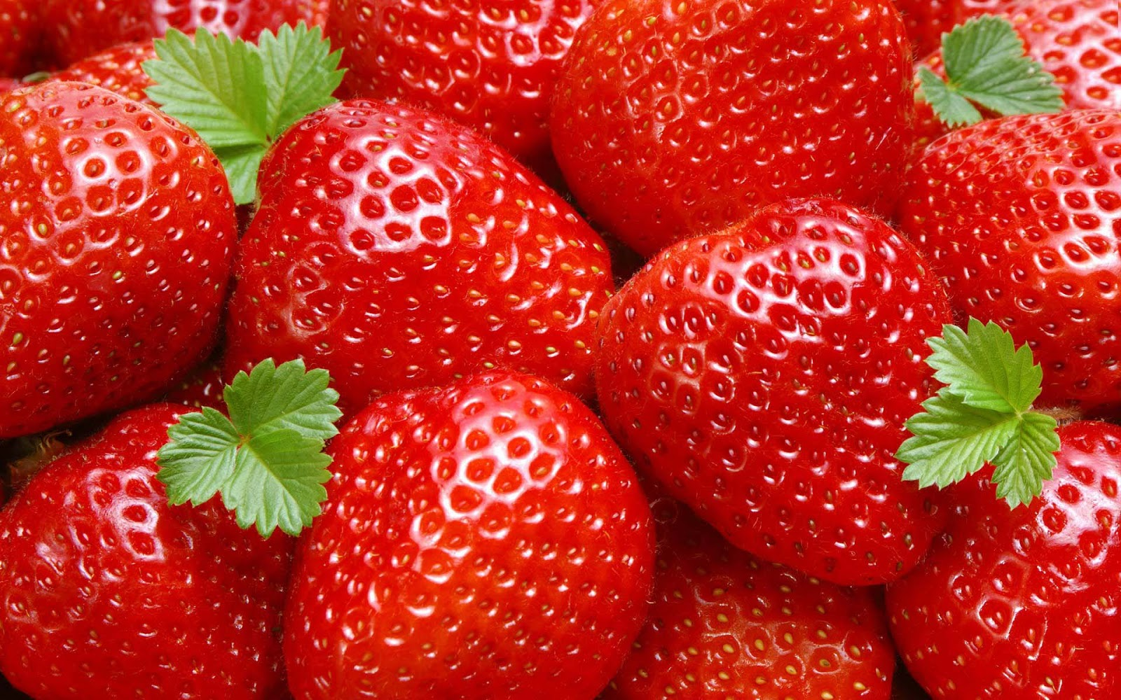 Beautiful fruits wallpapers - Beautiful Strawberries Widescreen Images
