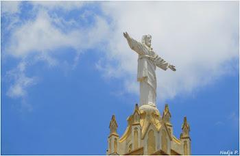 """""""Que tenhamos mais consciência, coragem e força para reagir e dizer NÃO..."""