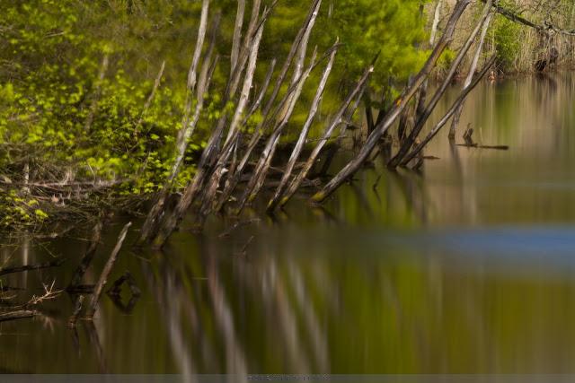 een langere sluitertijd strijkt het water glad - Long shutter speed makes the water look silky smooth