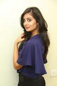 Bhanu sri mehra sizzling photos-thumbnail-7