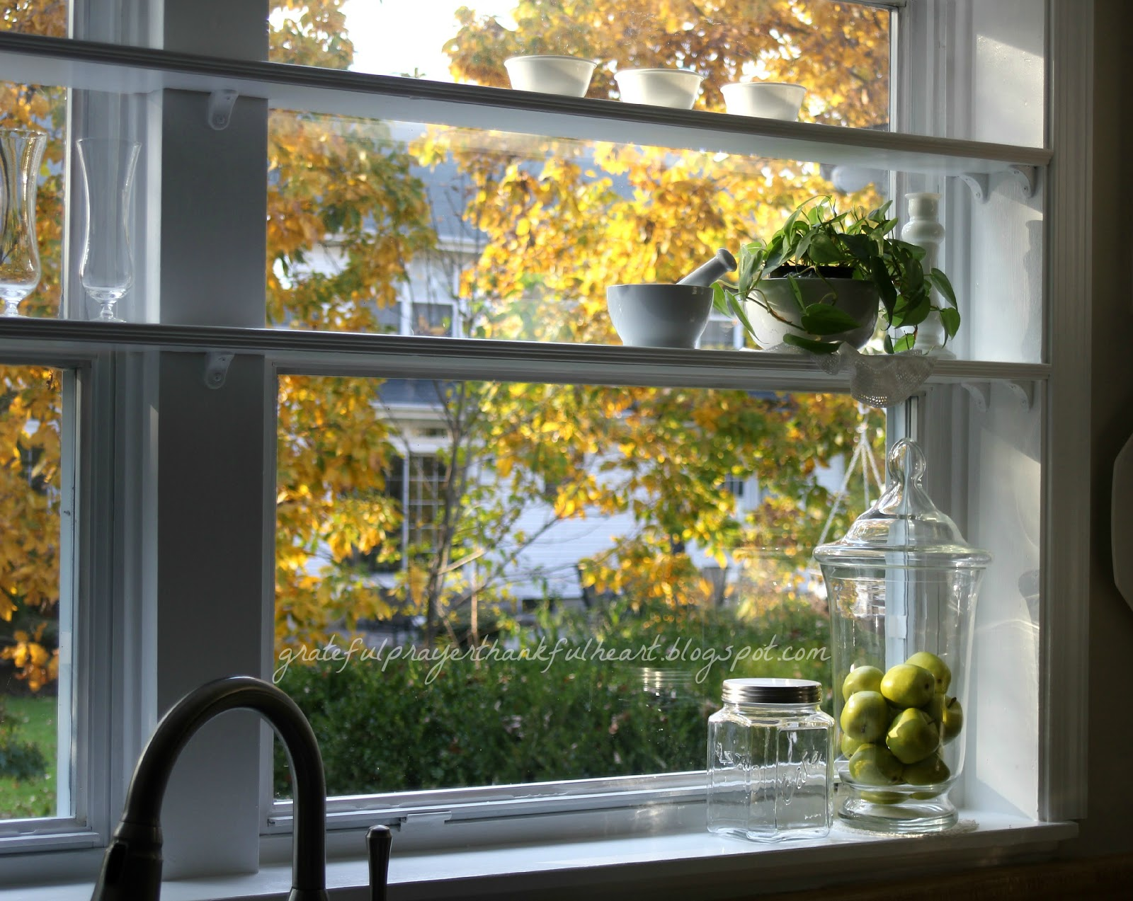 Kitchen Window Shelves Wm 5944jpg